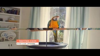 Shari's Berries TV Spot, 'Mothers' Day Parrot' - 1206 commercial airings