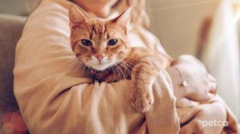 PETCO TV Spot, 'Cat Specialists' - Thumbnail 1