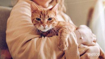 PETCO TV Spot, 'Cat Specialists' - Thumbnail 2