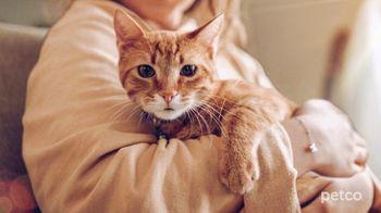 PETCO TV Spot, 'Cat Specialists' - Thumbnail 5