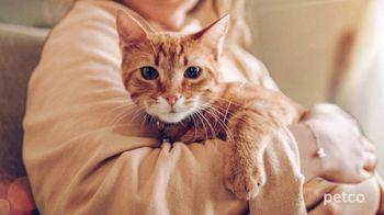 PETCO TV Spot, 'Cat Specialists' - Thumbnail 6