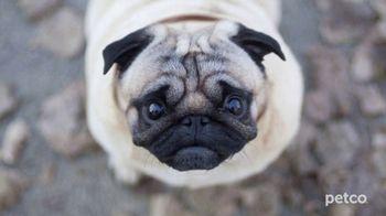 PETCO TV Spot, 'Affordable Pet Care' - Thumbnail 1