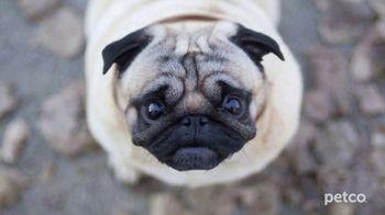 PETCO TV Spot, 'Affordable Pet Care' - Thumbnail 2