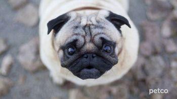 PETCO TV Spot, 'Affordable Pet Care' - Thumbnail 4