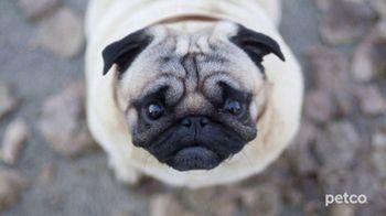 PETCO TV Spot, 'Affordable Pet Care' - Thumbnail 5