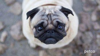 PETCO TV Spot, 'Affordable Pet Care' - Thumbnail 6