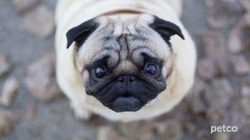 PETCO TV Spot, 'Affordable Pet Care' - Thumbnail 7