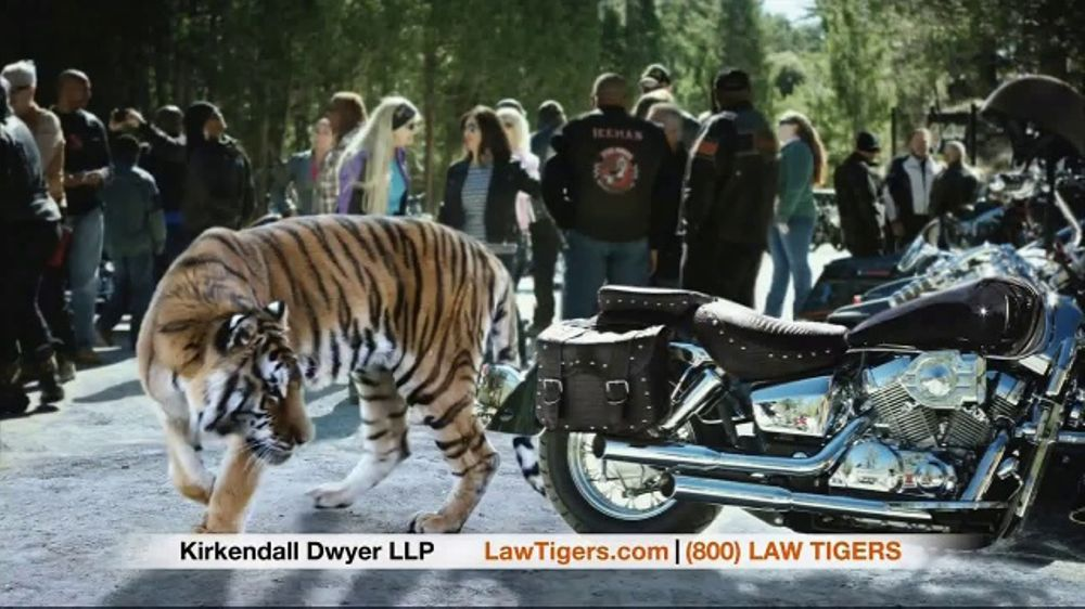 Law Tigers TV Commercial, 'The Convergence'