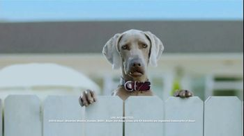 K9 Advantix II TV Spot, 'Musky Toes'