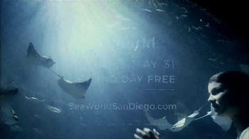 SeaWorld San Diego TV Spot, 'Real and Amazing' - Thumbnail 10
