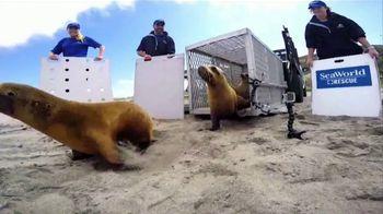 SeaWorld San Diego TV Spot, 'Real and Amazing' - Thumbnail 4