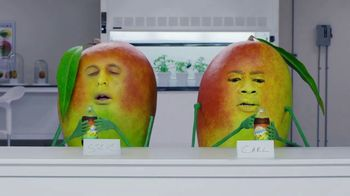 Snapple Takes 2 to Mango Tea TV Spot, 'Phil in a Bottle' - 7043 commercial airings