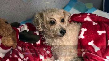 ASPCA Spring Member Drive TV Spot, 'Charlotte: Tote Bag'