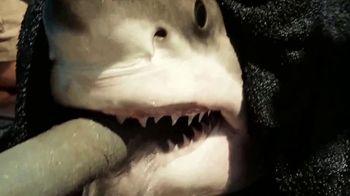 Jefferson's Ocean Aged at Sea Bourbon TV Spot, 'Ocearch' - Thumbnail 4