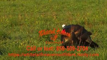 Whitetail Heaven Outfitters TV Spot, 'Do You Have What It Takes' - Thumbnail 5