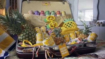 Bud Light Pine-Apple-Rita TV Spot, 'HAVE-A-RITA: Suitcase' - Thumbnail 9