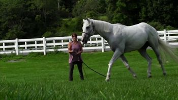 Thoroughbred Aftercare Alliance TV Spot, 'Real Credibility' - Thumbnail 4