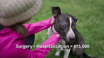 Healthy Paws Pet Insurance TV Spot, 'Pet Insurance for Dogs and Cats' - Thumbnail 4