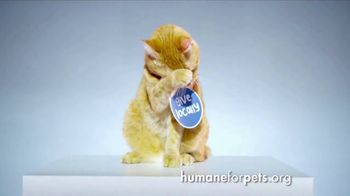 Humane Society for Shelter Pets TV Spot, 'Give Locally' - Thumbnail 1