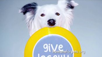 Humane Society for Shelter Pets TV Spot, 'Give Locally' - Thumbnail 2