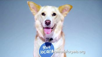 Humane Society for Shelter Pets TV Spot, 'Give Locally' - Thumbnail 5