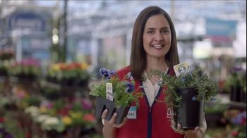 Lowe's Refresh Your Outdoors Event TV Spot, 'The Moment: Annuals' - Thumbnail 6