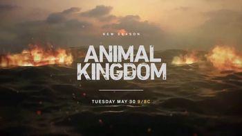 Animal Kingdom: The Complete First Season Home Entertainment TV Spot - Thumbnail 2