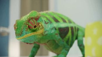 Valspar TV Spot, 'Chameleons: It's Time' - Thumbnail 1