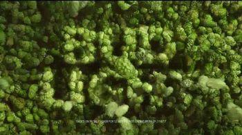 Bud Light TV Spot, 'Vendor' - Thumbnail 9