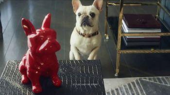 HomeGoods TV Spot, 'Frenchie Find'