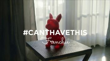 HomeGoods TV Spot, 'Frenchie Find' - Thumbnail 2