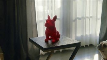 HomeGoods TV Spot, 'Frenchie Find' - Thumbnail 3