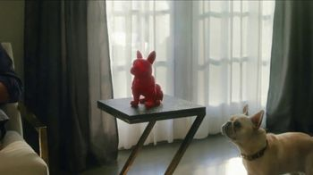 HomeGoods TV Spot, 'Frenchie Find' - Thumbnail 4