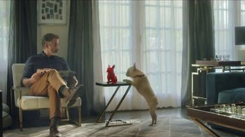 HomeGoods TV Spot, 'Frenchie Find' - Thumbnail 7