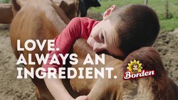 Borden Cheese TV Spot, 'Life's Lessons'