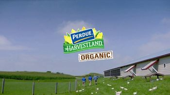 Perdue Farms Harvestland TV Spot, 'Free Range' - Thumbnail 9