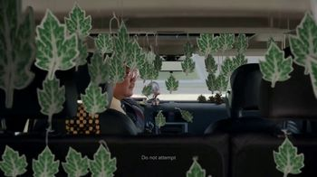 Jiffy Lube TV Spot, 'Cabin Air Filter' - Thumbnail 4