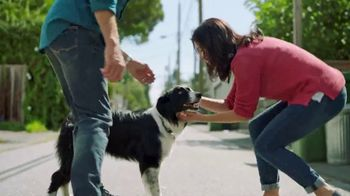 TracFone TV Spot, \'Lost Dog\'