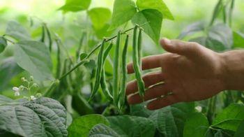 Del Monte Fresh Cut Green Beans TV Spot, 'Keep It Simple' - Thumbnail 4