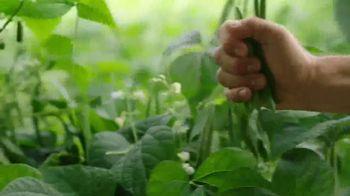 Del Monte Fresh Cut Green Beans TV Spot, 'Keep It Simple' - Thumbnail 5