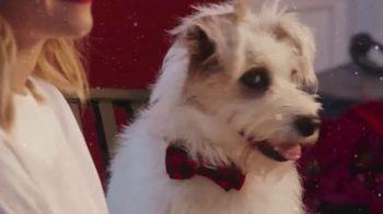 Balsam Hill TV Spot, 'Hallmark Channel: Spirit' Feat. Candace Cameron Bure - 6 commercial airings