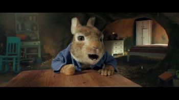 Peter Rabbit - 6106 commercial airings