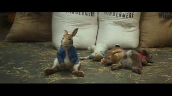 Peter Rabbit - Thumbnail 2