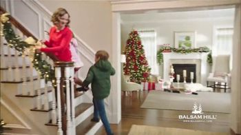 Balsam Hill Black Friday Deals TV Spot, 'No Place Like Home' - Thumbnail 6