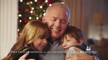 Balsam Hill Black Friday Deals TV Spot, 'No Place Like Home' - Thumbnail 8