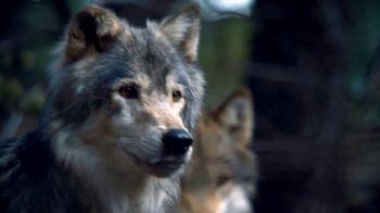 Blue Buffalo BLUE Wilderness TV Spot, 'Wolf Pack' - Thumbnail 2