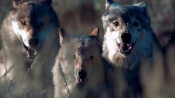 Blue Buffalo BLUE Wilderness TV Spot, 'Wolf Pack'