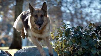 Blue Buffalo BLUE Wilderness TV Spot, 'Wolf Pack' - Thumbnail 4