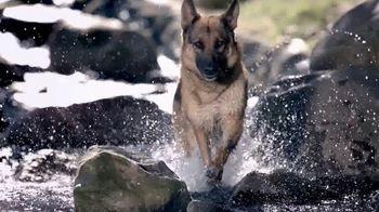 Blue Buffalo BLUE Wilderness TV Spot, 'Wolf Pack' - Thumbnail 5