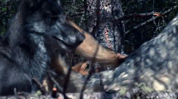 Blue Buffalo BLUE Wilderness TV Spot, 'Wolf Pack' - Thumbnail 8